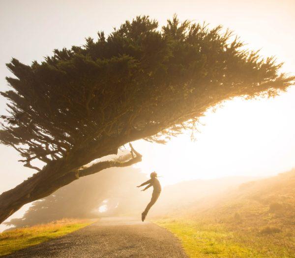大きな木のしたで手を広げてジャンプする人