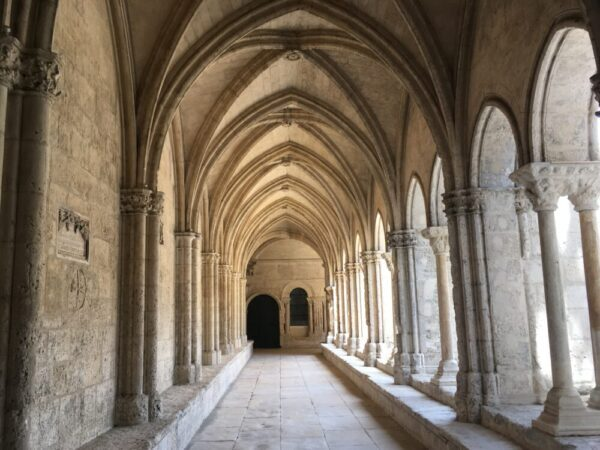 Le cloître Saint-Trophime (サン・トロフィーム教会の回廊)